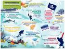 Royal Caribbean's new 2016-17 Caribbean Adventures Collection